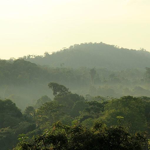 Costa Rican la Minita