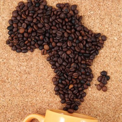Kenya Mihando Peaberry